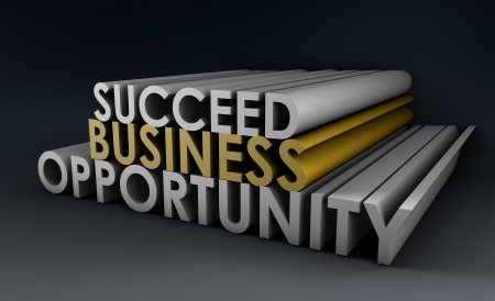 opportunity: Business Opportunity and the Need to Succeed
