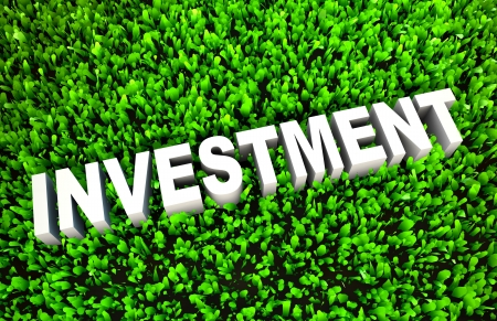 Growing Investment and Wise Growth of Wealth Stock Photo - 19290188