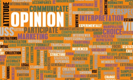 opinion poll: Opinion and Personal Views on a Public Issue Stock Photo