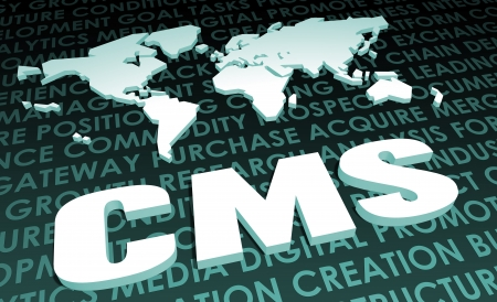 CMS Industry Global Standard on 3D Map photo