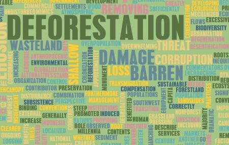 deforestacion: Deforestación Pérdida Damage Concept como arte