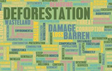forest conservation: Deforestation Forest Loss Damage Concept as Art Stock Photo