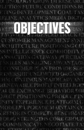objectives: Objectives in Business as Motivation in Stone Wall