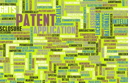 to sue: Patent Application as a Intellectual Property Art