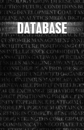strong base: Database in Business as Motivation in Stone Wall