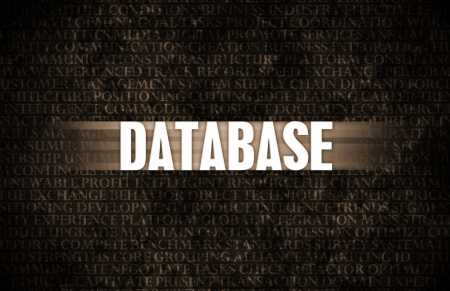 dominance: Database in Business as Motivation in Stone Wall