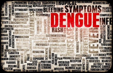 dengue: Dengue Fever Concept as a Medical Disease Art