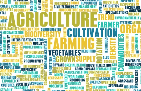 sector: Agriculture Industry in the Farming Sector Art Stock Photo
