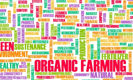 continued: Organic Farming as a Concept for Sustenance