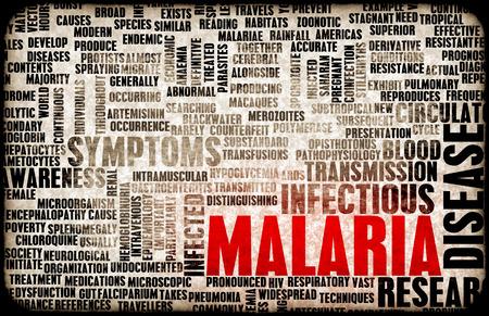 disease carrier: Malaria Disease Concept as a Medical Condition Art Stock Photo