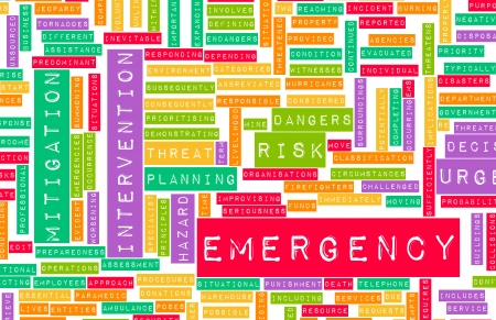 bcp: Emergency Planning and Disaster Response as Concept