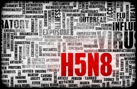 H5N8 Concept as a Medical Research Topic