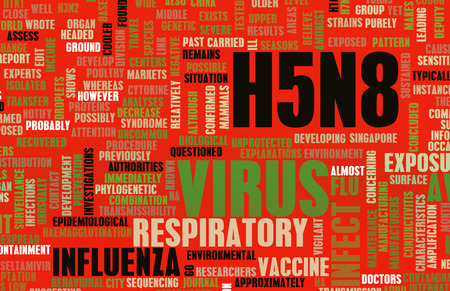 avian: H5N8 Concept as a Medical Research Topic