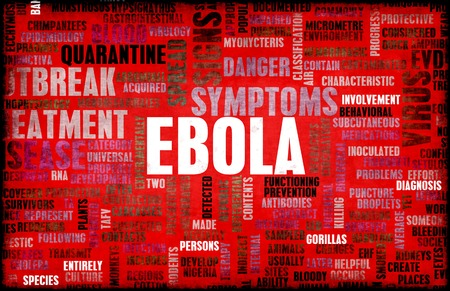 quarantine: Ebola Virus Disease Outbreak and Crisis Art