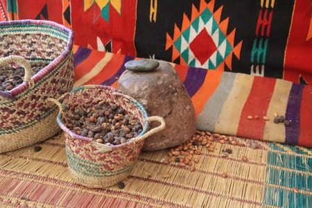 argan: Argan Fruit or Nut in a Basket at Morocco