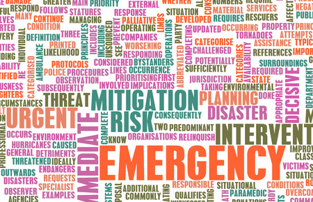mitigation: Emergency Planning and Disaster Response as Concept