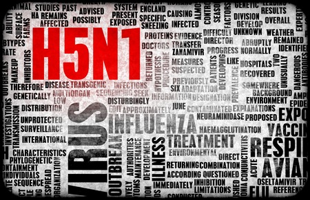 h5n1: H5N1 Concept as a Medical Research Topic Stock Photo