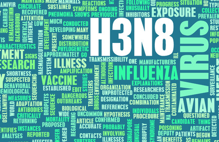 topic: H3N8 Concept as a Medical Research Topic Stock Photo