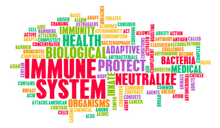 良いと健康的な人間の体の免疫システム 写真素材