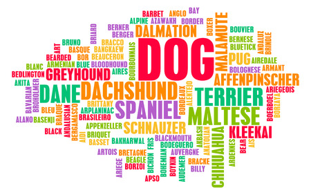abstract wallpaper: All Types of Dogs and Every Breed as Concept Stock Photo