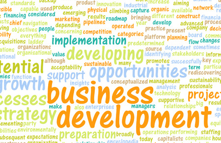 business development: Business Development Major Points for a Manager
