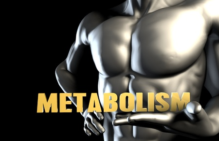metabolism: Metabolism With a Business Man Holding Up as Concept Stock Photo