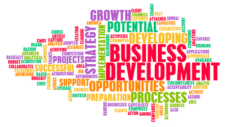 growing partnership: Business Development Major Points for a Manager