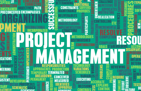 management team: Project Management or a Project Manager as Concept