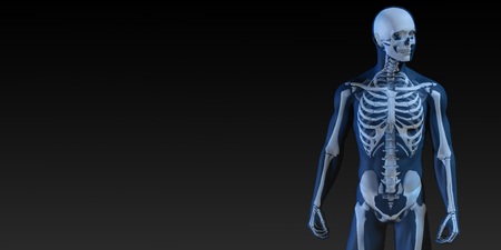 whole body: Human Bone Structure Diagram in Blue and Black