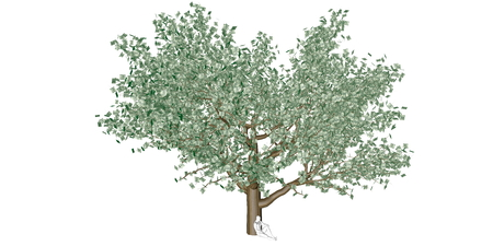 Financiële Planning en Investeringen Groei voor persoonlijke rijkdom