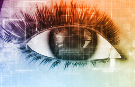 빅 브라더 인터셉트 개인 정보와 온라인 개인 정보 보호