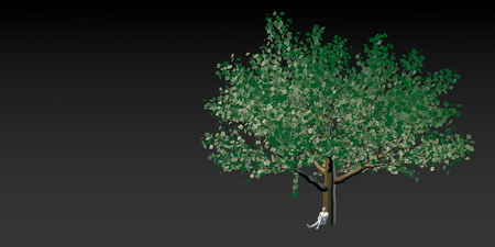 bank branch: Money Tree with US Dollars Leaves Growing Above Stock Photo