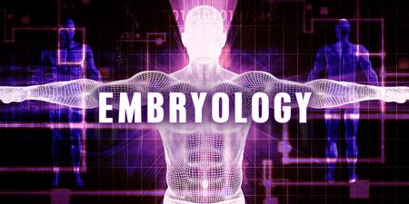 embryology: Embryology as a Digital Technology Medical Concept Art