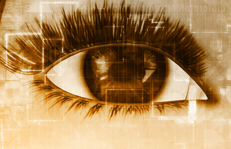 snoop: Online Privacy with Big Brother Intercepting Personal Data