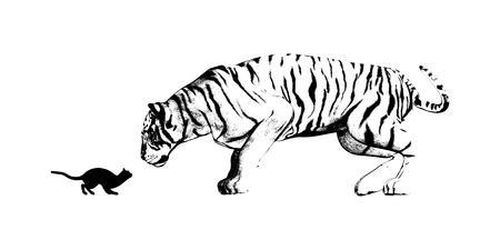 adversity: Mirror of Cat and Tiger as a Adversity Concept