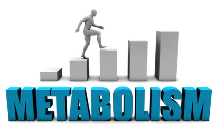 Metabolism 3D Concept  in Blue with Bar Chart Graph Stockfoto