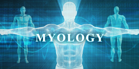 specialty: Myology as a Medical Specialty Field or Department Stock Photo