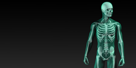 full: Human Bone Structure Diagram in Blue and Black