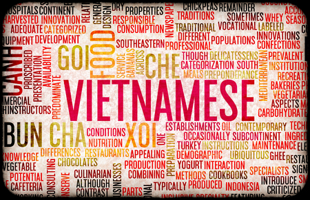 gastronomy: Vietnamese Food and Cuisine Menu Background with Local Dishes