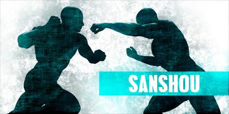 Sanshou Martial Arts Self Defence Training Concept
