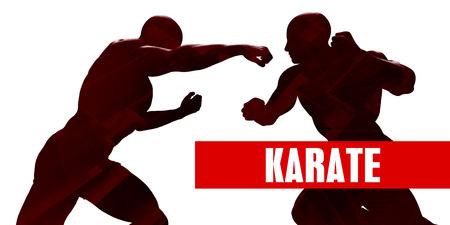 Karate Class with Silhouette of Two Men Fighting Lizenzfreie Bilder