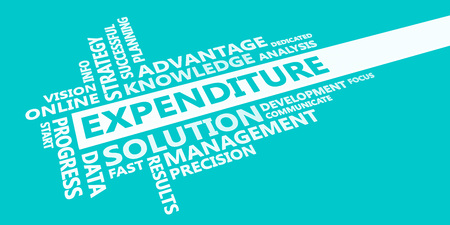 Expenditure Presentation Background in Blue and White