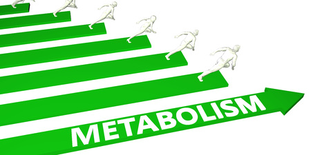 Metabolism Consulting Business Services as Concept Stock Photo