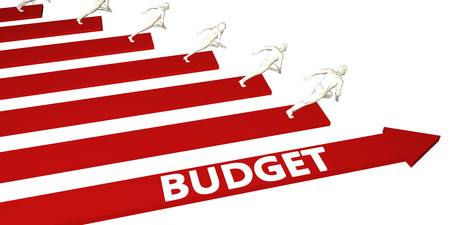 Budget Information and Presentation Concept for Business Standard-Bild