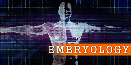 Embryology Medical Industry with Human Body Scan Concept Stock Photo