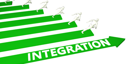 Integration Consulting Business Services as Concept