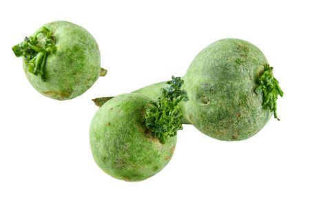 Radis vert isolé sur fond blanc. Contexte de l'alimentation biologique.