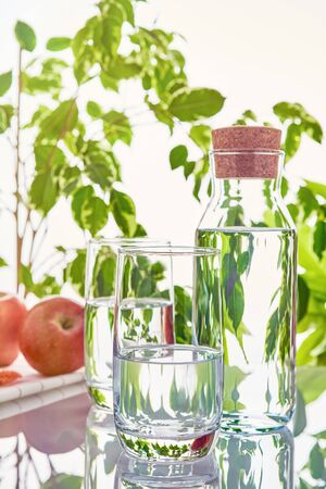 Two glasses and a bottle of water on a background of green leaves in the sunlight. Imagens