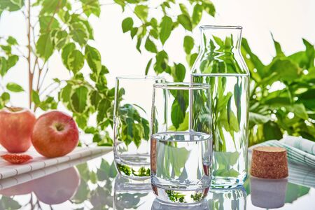 Two glasses and a bottle of water on a background of green leaves in the sunlight. The glass in the background is empty.