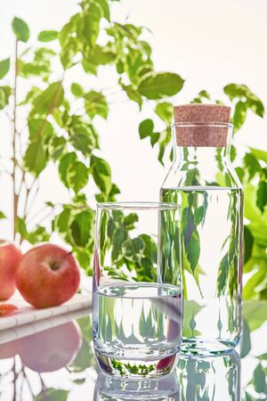 A glass and a bottle of water on a background of green leaves in the sunlight. Imagens